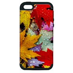 Coloorfull Leave Apple iPhone 5 Hardshell Case (PC+Silicone)