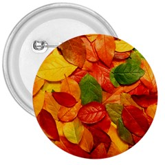 Colorful Fall Leaves 3  Buttons
