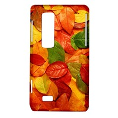 Colorful Fall Leaves LG Optimus Thrill 4G P925