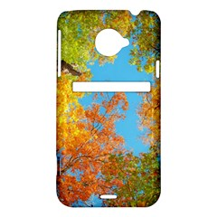 Colorful Leaves Sky HTC Evo 4G LTE Hardshell Case