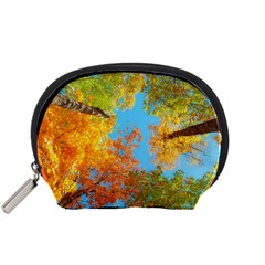 Colorful Leaves Sky Accessory Pouches (Small)