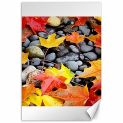 Colorful Leaves Stones Canvas 24  x 36