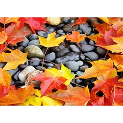 Colorful Leaves Stones Birthday Cake 3D Greeting Card (7x5)