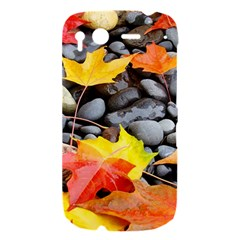 Colorful Leaves Stones HTC Desire S Hardshell Case