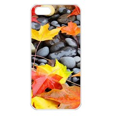Colorful Leaves Stones Apple iPhone 5 Seamless Case (White)