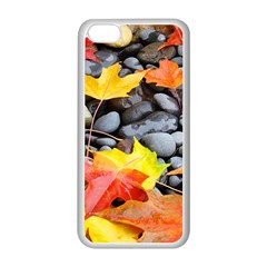 Colorful Leaves Stones Apple iPhone 5C Seamless Case (White)