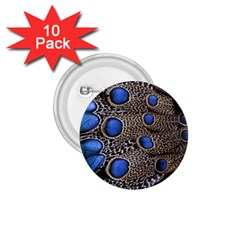 Feathers Peacock Light 1.75  Buttons (10 pack)