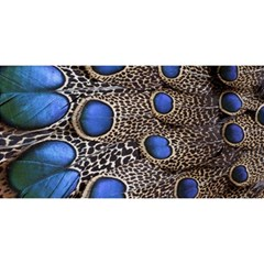 Feathers Peacock Light You Are Invited 3d Greeting Card (8x4)