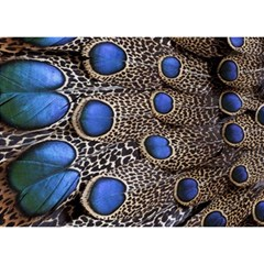 Feathers Peacock Light Birthday Cake 3D Greeting Card (7x5)