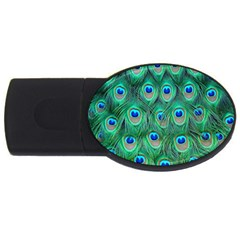 Peacock Feather USB Flash Drive Oval (4 GB)