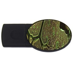 Fractal Complexity 3d Dimensional USB Flash Drive Oval (2 GB)