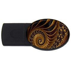Fractal Spiral Endless Mathematics USB Flash Drive Oval (2 GB)