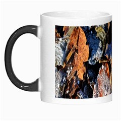 Frost Leaves Winter Park Morning Morph Mugs