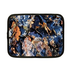Frost Leaves Winter Park Morning Netbook Case (Small)