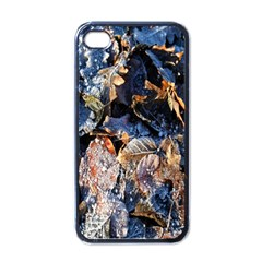 Frost Leaves Winter Park Morning Apple iPhone 4 Case (Black)