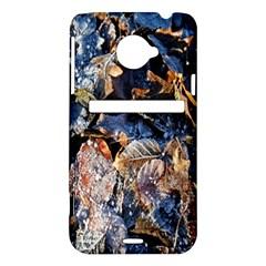 Frost Leaves Winter Park Morning HTC Evo 4G LTE Hardshell Case