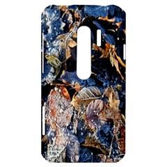 Frost Leaves Winter Park Morning HTC Evo 3D Hardshell Case