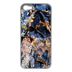 Frost Leaves Winter Park Morning Apple iPhone 5 Case (Silver)