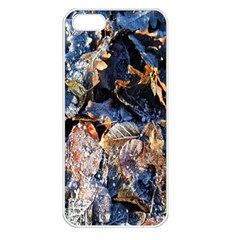 Frost Leaves Winter Park Morning Apple iPhone 5 Seamless Case (White)