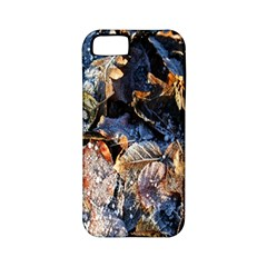 Frost Leaves Winter Park Morning Apple iPhone 5 Classic Hardshell Case (PC+Silicone)