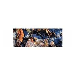 Frost Leaves Winter Park Morning Satin Scarf (Oblong)