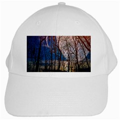 Full Moon Forest Night Darkness White Cap