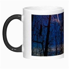 Full Moon Forest Night Darkness Morph Mugs