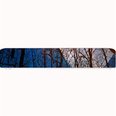 Full Moon Forest Night Darkness Small Bar Mats