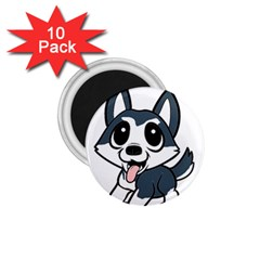 Pomsky Cartoon 1.75  Magnets (10 pack)