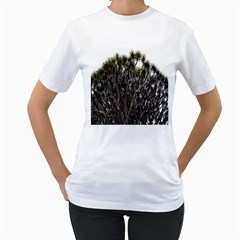 Inflorescences Women s T-Shirt (White) (Two Sided)