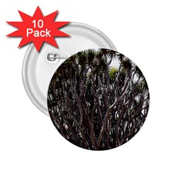 Inflorescences 2.25  Buttons (10 pack)