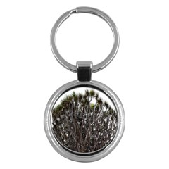 Inflorescences Key Chains (Round)