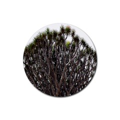 Inflorescences Rubber Round Coaster (4 pack)