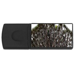Inflorescences USB Flash Drive Rectangular (2 GB)