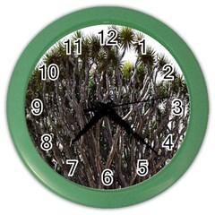 Inflorescences Color Wall Clocks