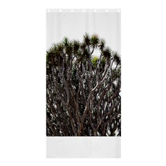 Inflorescences Shower Curtain 36  x 72  (Stall)