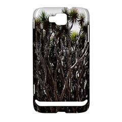 Inflorescences Samsung Ativ S i8750 Hardshell Case
