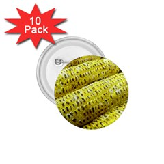 Corn Grilled Corn Cob Maize Cob 1.75  Buttons (10 pack)