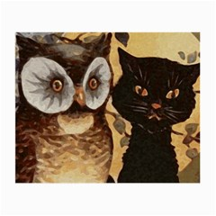 Owl And Black Cat Small Glasses Cloth (2-Side)