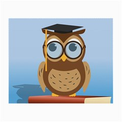 Read Owl Book Owl Glasses Read Small Glasses Cloth (2-Side)