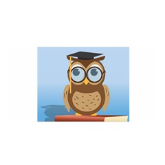 Read Owl Book Owl Glasses Read Satin Wrap
