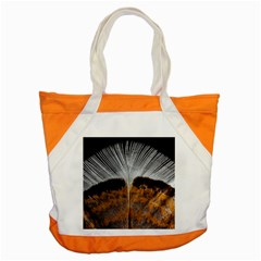 Spring Bird Feather Turkey Feather Accent Tote Bag