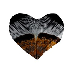 Spring Bird Feather Turkey Feather Standard 16  Premium Heart Shape Cushions