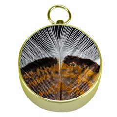 Spring Bird Feather Turkey Feather Gold Compasses
