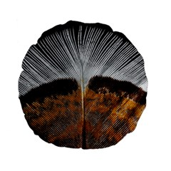 Spring Bird Feather Turkey Feather Standard 15  Premium Flano Round Cushions