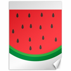 Watermelon Fruit Canvas 12  x 16