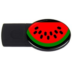 Watermelon Melon Seeds Produce USB Flash Drive Oval (2 GB)