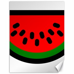Watermelon Melon Seeds Produce Canvas 18  x 24
