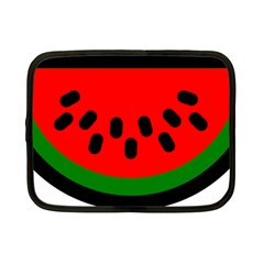 Watermelon Melon Seeds Produce Netbook Case (Small)