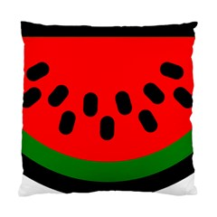 Watermelon Melon Seeds Produce Standard Cushion Case (Two Sides)